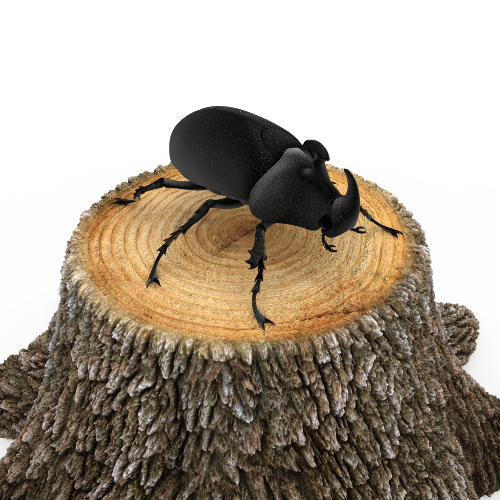 That's a HUGE Beetle! Wrong Scale (beetle model by 3d_molier)