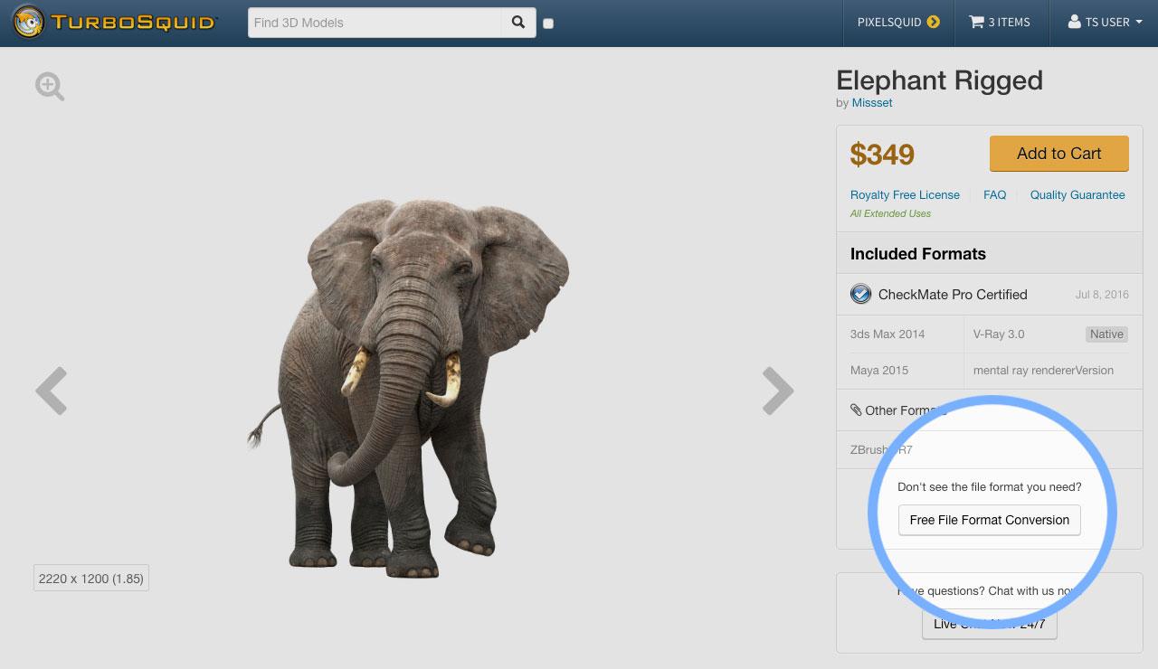 elephant-conversion-post